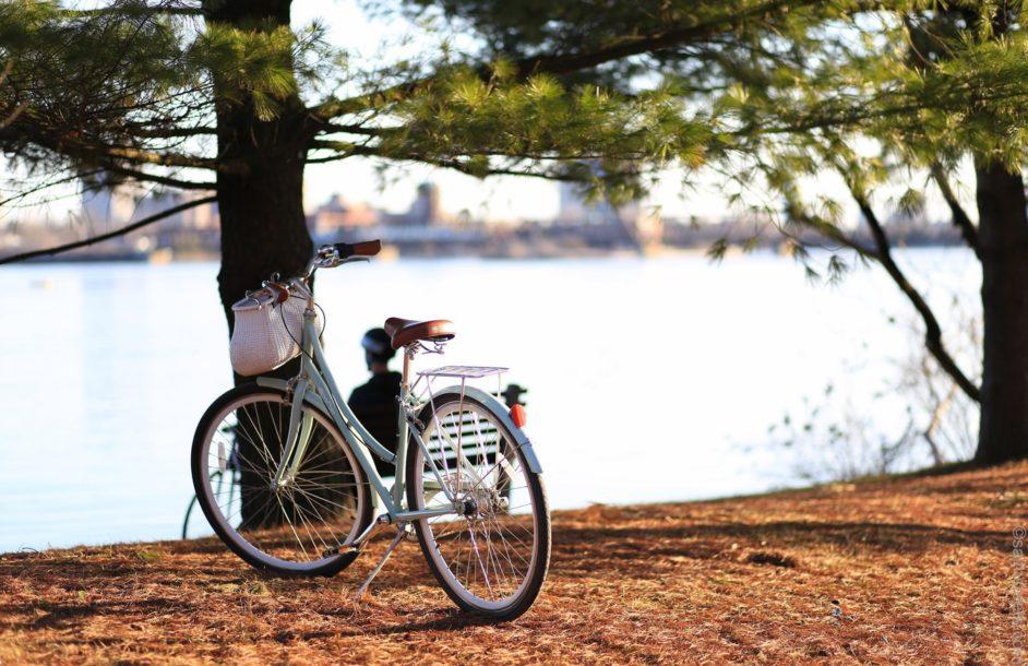 Ma powstać 1000 km ścieżki rowerowej wzdłuż Odry