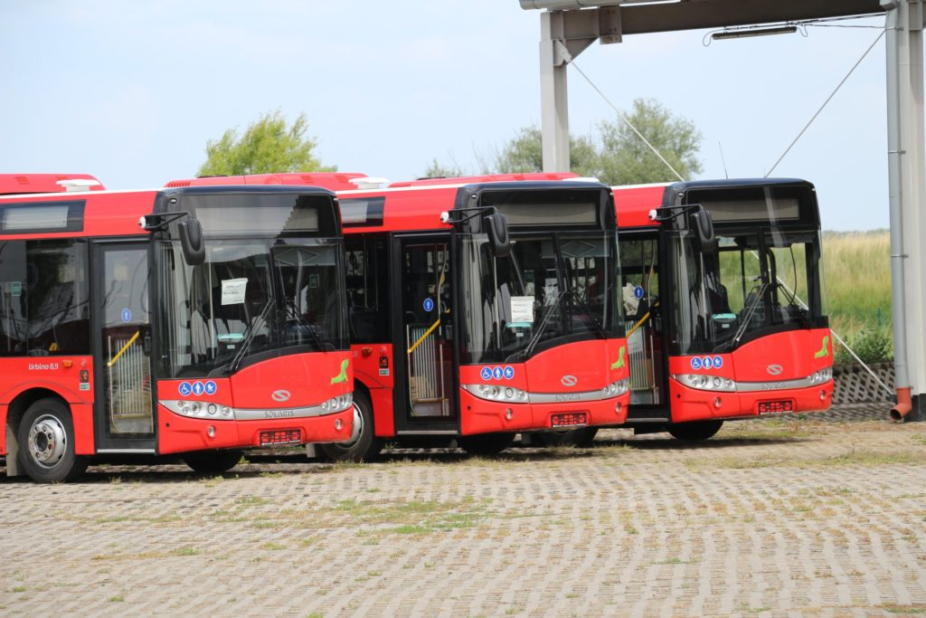 nowe autobusy w Nowej Soli