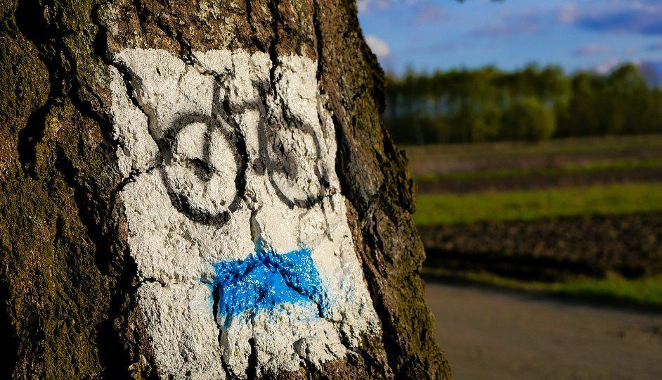 Czas na trójmiejską ścieżkę rowerową?