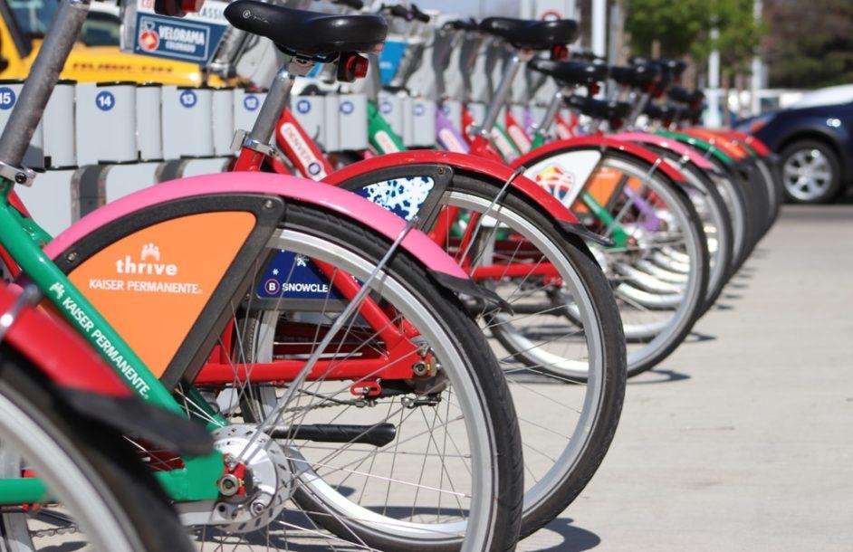 Rower miejski w Nowej Soli?
